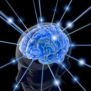 Lavage de cerveau dans Boulot-boulot cerveau2